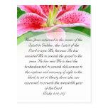Bible passage, pink lily postcard