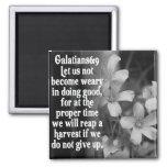 BIBLE SCRIPTURE GALATIANS 6:9 MAGNET