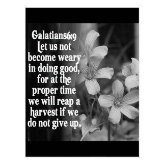 BIBLE SCRIPTURE GALATIANS 6:9 POSTCARD