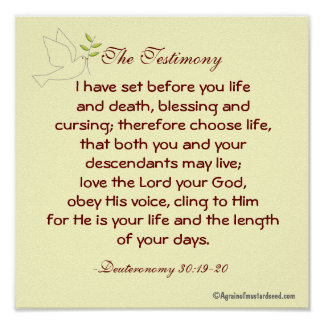 Bible Scripture prayers Print