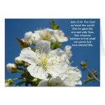 Bible Scripture Savior Blossoms John 3:16 Card