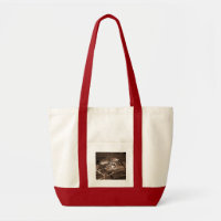Bible Stories Bag bag