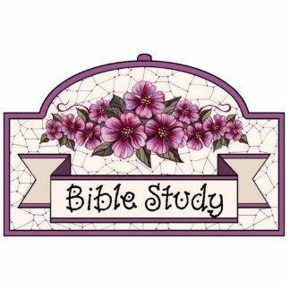 """""""Bible Study"""" - Decorative Sign - 46 Cutout"""