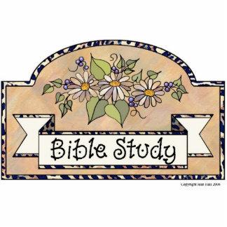 """""""Bible Study"""" - Decorative Sign Cutout"""