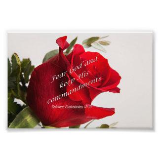 Bible Verse Ecclesiastes 12-13 Flower Photograph