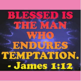 Bible verse from James 1:12. Cutout