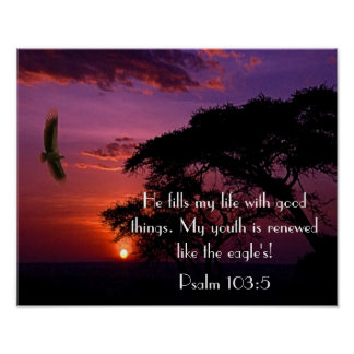 bible verse Psalm 103:5 sunset and eagle Poster