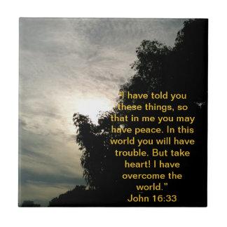 Bible Verse Tile: Jesus has overcome the world. Small Square Tile