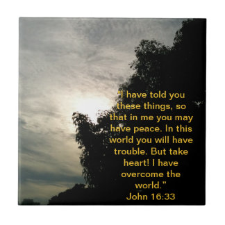 Bible Verse Tile: Jesus has overcome the world. Tile