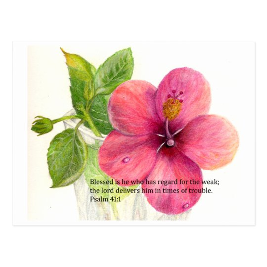 Bible Verse With A Flower Hibiscus Postcard Zazzlecom