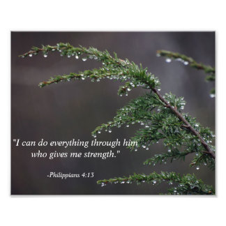 Bible Verse With Tree In Spring Rain Photograph
