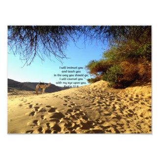 Bible Verses Inspirational Quote Psalm 32:8 Photo Print