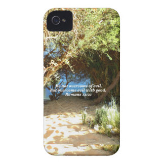 Bible Verses Love Quote Saying Romans 12:21 iPhone 4 Case