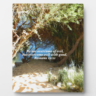 Bible Verses Love Quote Saying Romans 12:21 Plaque