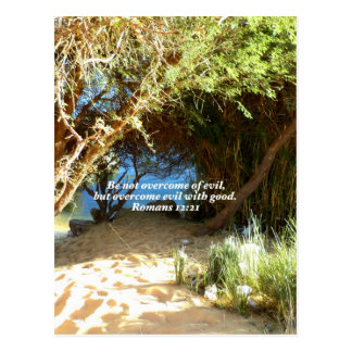 Bible Verses Love Quote Saying Romans 12:21 Postcard