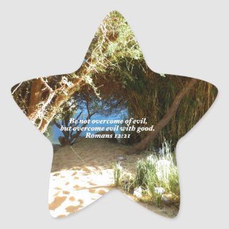 Bible Verses Love Quote Saying Romans 12:21 Star Sticker