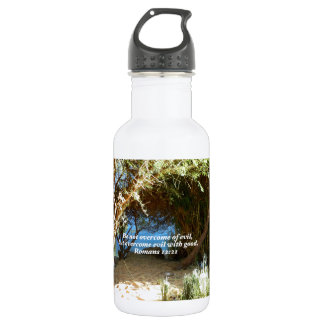 Bible Verses Love Quote Saying Romans 12:21 Water Bottle