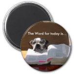 Biblia que lee el imán de Boston Terrier
