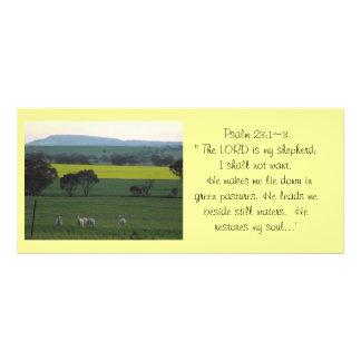 Biblical Rack Card 3