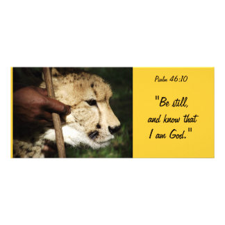 Biblical Rack Card 6