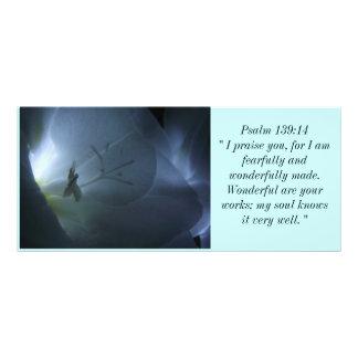 Biblical Rack Card 8
