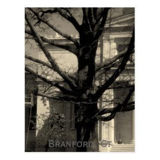 Biblioteca, Branford, postal del Ct