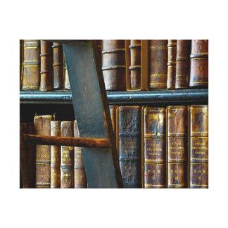 Biblioteca vieja, libros viejos impresión en tela