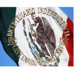 Bicentenario y Centenario Celebracion Esculturas Fotográficas