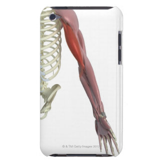 Biceps Brachii iPod Touch Cases