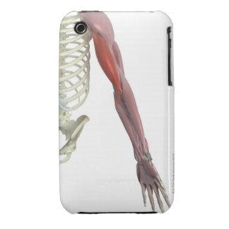 Biceps Brachii iPhone 3 Cover