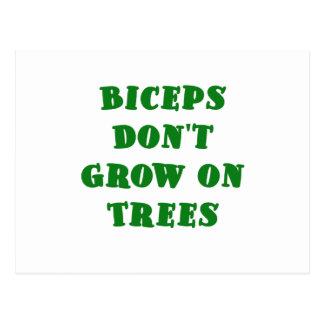 Biceps dont Grow on Trees Postcard