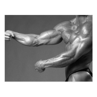 Biceps Postcard