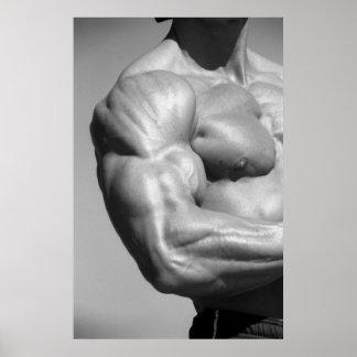 Biceps Poster #2