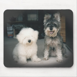Bichon and Schnauzer Mouse Pad