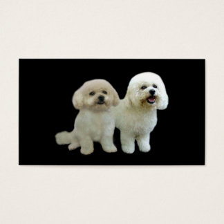 Bichon Breeder Business Card