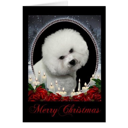 Bichon Christmas Card