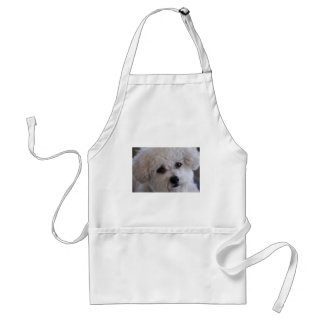 Bichon close up adult apron