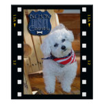 Bichon country with negative frame poster