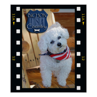 Bichon country with negative frame posters