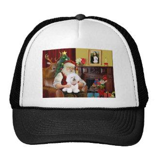 Bichon de Santa Frise (#1) Gorros