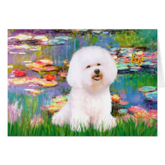 Bichon Frise 1 - Lilies 2 Greeting Cards