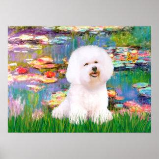 Bichon Frise 1 - Lilies 2 Poster
