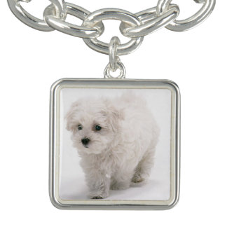 5 Charms Bracelet with Bichon photos