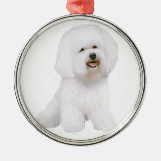 Bichon Frise (A) Metal Ornament
