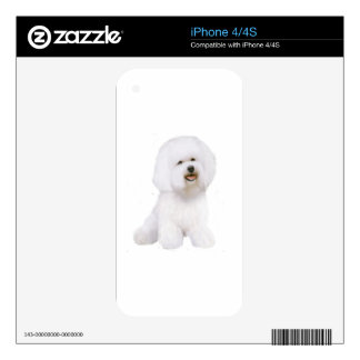 Bichon Frise A Decals For iPhone 4S