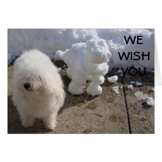 BICHON FRISE AND SNOW DOG WISHES CARD