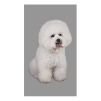 Bichon Frise Breeder Business Card