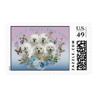 Bichon Frise Can't Have Just One Postage
