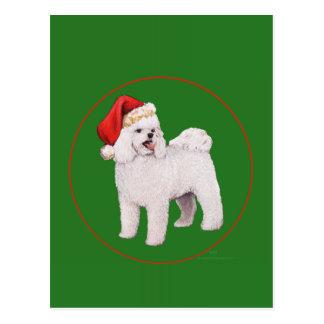 Bichon Frise Christmas Postcard