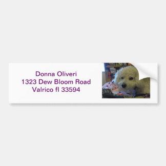 Bichon Frise dog Bumper Sticker